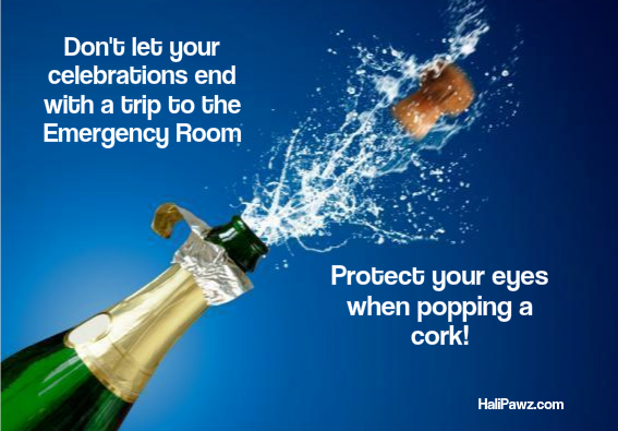 HaliPawz protect eye champagne cork